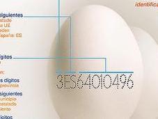 código numérico huevos maltrato gallinas