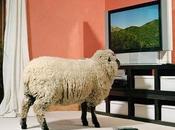 LLEGA TDT: Televisión Tontos