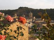 comarca leridana l'Urgell