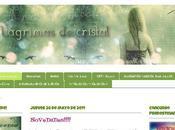 Nuevo Look Blog
