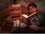 """Libro Favorito"""", Dibam"""