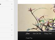 Añadir propias opciones Theme Customizer WordPress