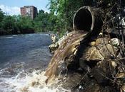 Venezuela ambiental: Cifras rojas