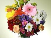 Madre regala flores obtén descuento seguirnos, gracias Máxima Flores