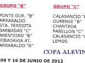 Copa alevín segunda ourense (grupos calendario)