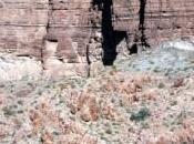 asimilación minerales Cámbrico pudo haber sido factor clave para vida