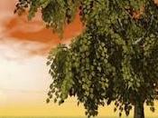 Fábula árbol...