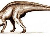 Dinosaurios Francia (II)