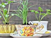 DIY: Tazas vintage como pequeñas macetas