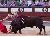 Sobre corrida Montecillo isidro