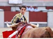 torero picador Ventas