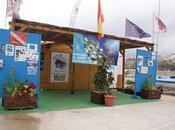 Buceo isla benidorm punta garbi españa