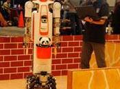 RoboCup: sueño competir equipo humanos 2050