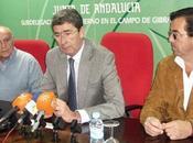 Sobre indulto Algeciras (II)