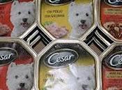 Prueba comida para perros Cesar