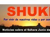 Resumen SHUKRAN junio 2012