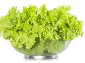 Este verano dieta tonos verdes