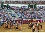 Avance carteles Feria Málaga