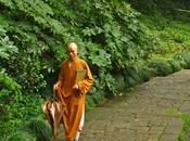 Visita templo chino Alma Escondida