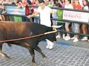 Carcabuey vuelve vibrar toro cuerda