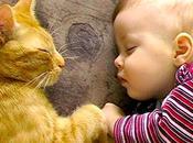 niños animales domésticos