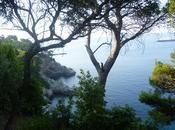 Vacaciones Dubrovnik