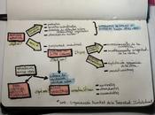 Notas sobre Propiedad Intelectual. #cursolibrebus