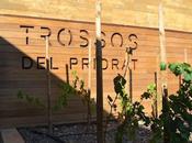Trosso Priorat: bodega enamora