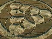 Círculos extraterrestres campos trigo