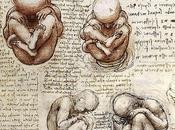 Comunicación prenatal
