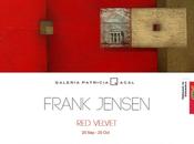 Exposición VELVET Frank Jensen Galería Patricia Acal