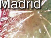Fiestas Sierra Madrid