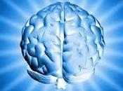 Factores clave para mejorar memoria