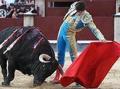 toro comercial