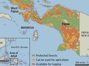 Salvar selvas chequera mano