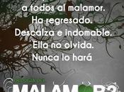 Pronto México: raíz (Malamor José Ignacio Valenzuela
