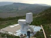 baño público gasta 3478 rollos papel higiénico