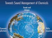 """INFORME PROGRAMA NACIONES UNIDAS PARA MEDIO AMBIENTE 2012 URGE TOMAR """"medidas para reducir riesgos cada mayores plantean productos químicos salud medio ambiente"""""""