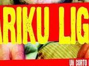 Bariku Light review