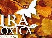 realidad, apoya diputacion coruña comercio local ecológico para salir crisis