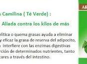 Camilina verde, complemento estrella dietas adelgazantes