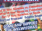 España vence namibia gana torneo