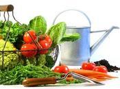 Prevención enfermedades relacionadas nutrición