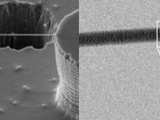 Consiguen primera imagen través microscopio electrónico