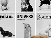 perros fuesen fonts