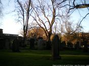 Visita cementerio