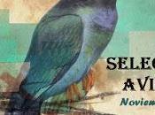 Selección aviar noviembre'12