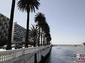 Viña Mar, primera Chile