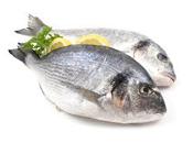 Pescado: Tipos propiedades