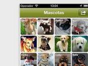 Doggy Talky, nueva Social Canina